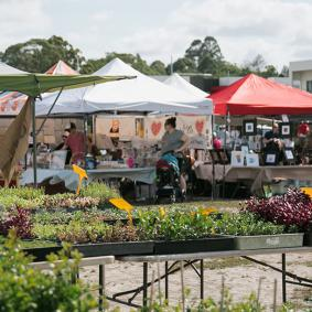 Ermington markets