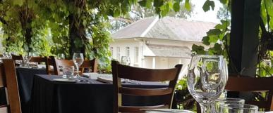 Historic Vines and Classic Wines – Wine Tasting Evening at Old Government House