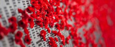 Poppies on Anzac memorial wall in Canberra