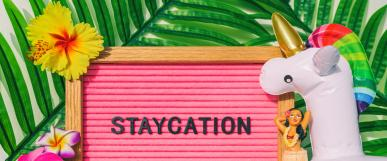 Staycation on a pink board with blow up unicorn, yellow flower and green leaves
