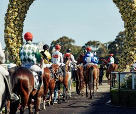 horses and jockeys at the start of a race